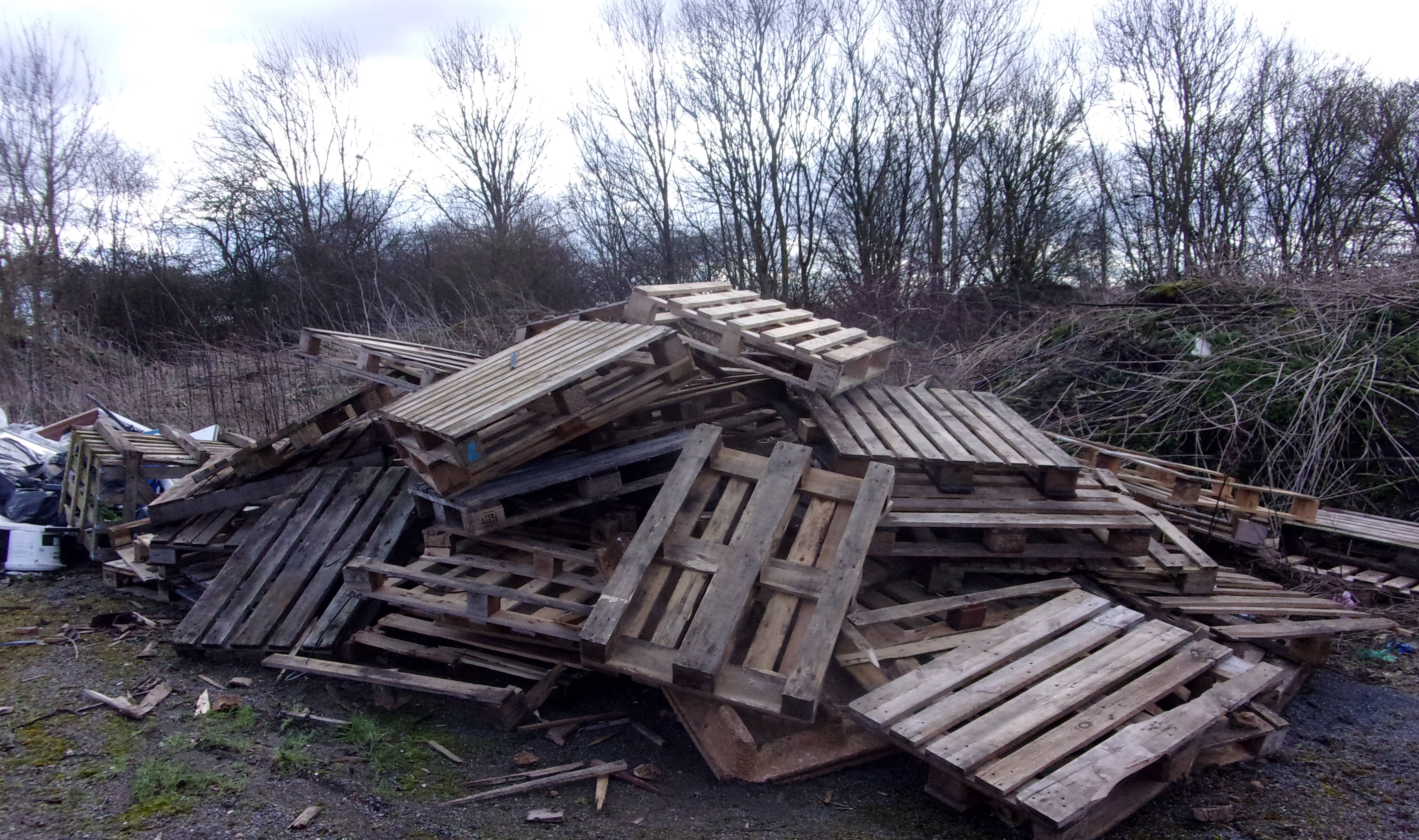 Littering, fly-tipping, dumped waste and abandoned vehicles