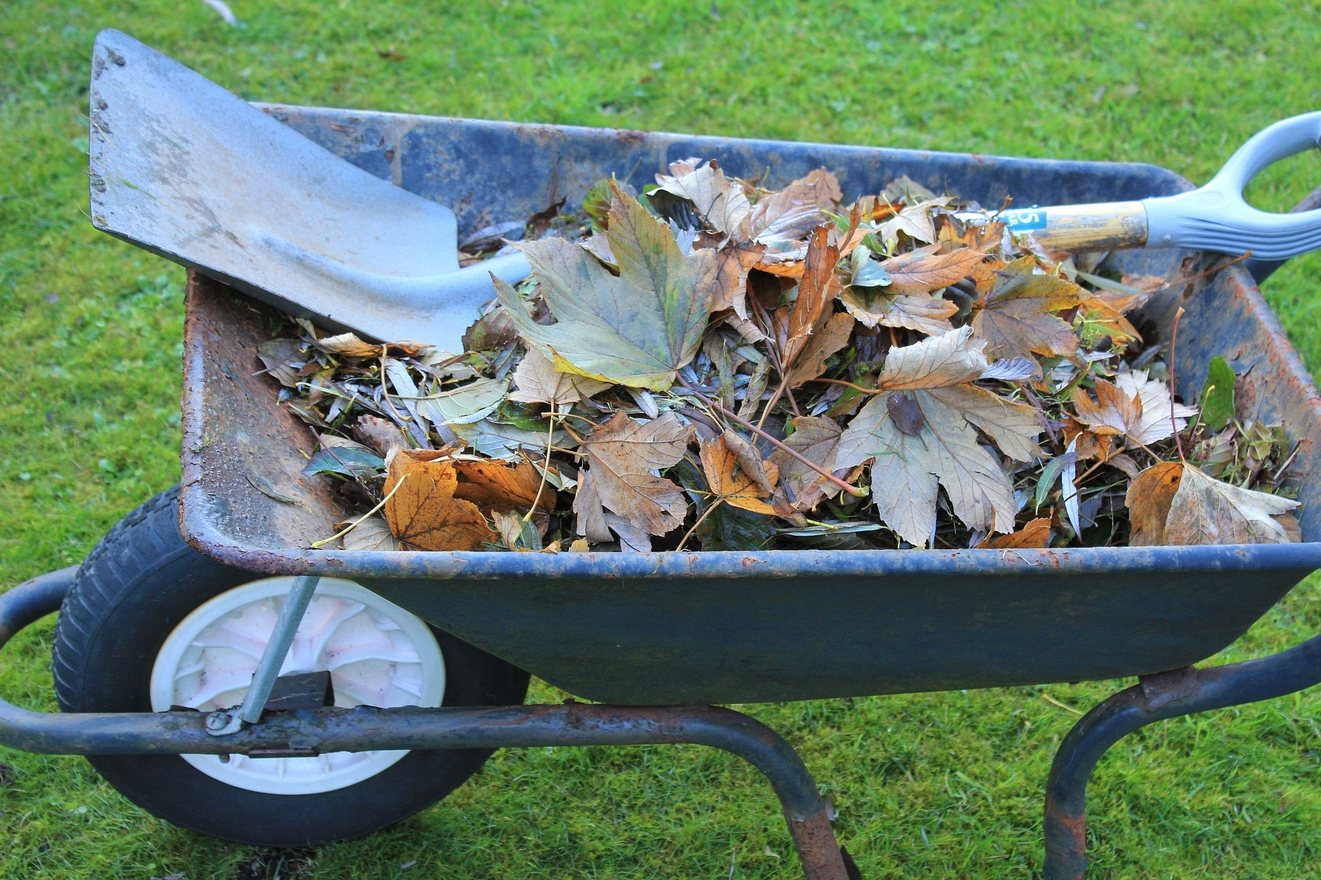 Garden waste collections to resume on 15 February